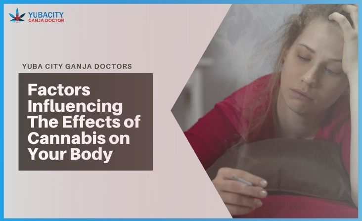 Effects of Cannabis on Your Body