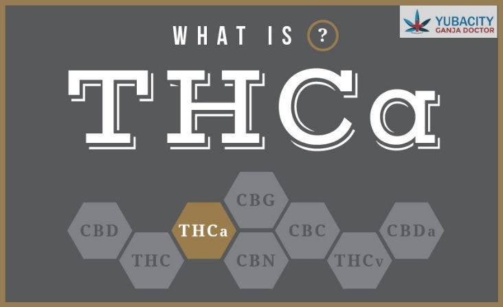 Benefits of THCA, What is THCA